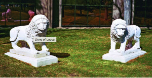Lions of Lucca East