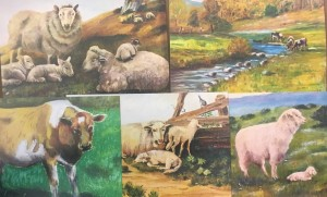 Mimi collection -farm/sheep themed prints-5 pack