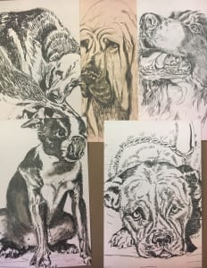Mimi collection -black and white dog drawings -5pack