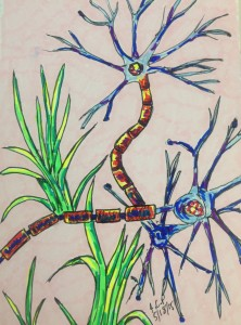 Grassy nerve cells