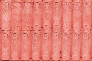 Collection of roof tiles | Coleção de telhas