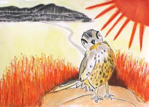 Solar Canary
