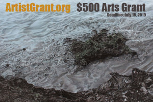 $500 Grant for Visual Artists