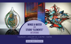 4th Biennial Wings & Water