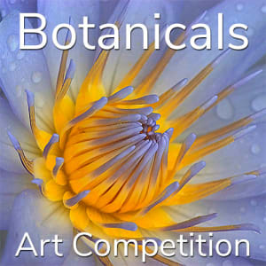 "11th Annual ""Botanicals"" Online Art Competition"