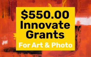 $ 550.00艺术家的创新赠款+摄影师
