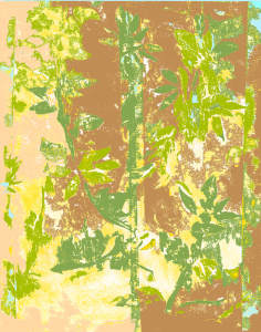 Tropical Bamboo Series: Sprouting Anew