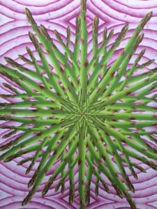 Asparagus on Red Onion Kaleidoscope