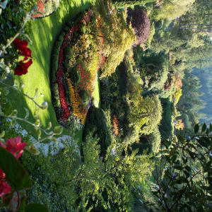 The Butchart Gardens by Kate Sarkaria