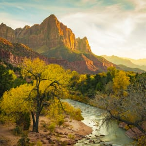 Zion National Park by Renee Love, RN
