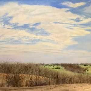 Spring, Cass County by Ben Darling