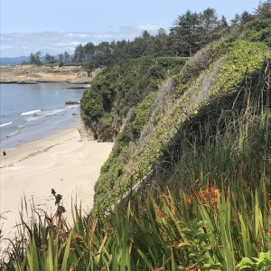 167 - Beach Walkers II - Where the Pacific Meets Oregon - View North - Cape Arago