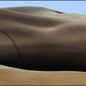 Sand Dunes, Yuma, Arizona #55