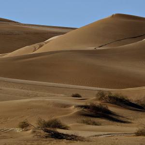 Sand Dunes, Yuma, Arizona #60