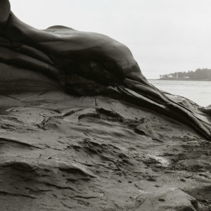 Grandfather Series (Galiano Rock Formations) - #005