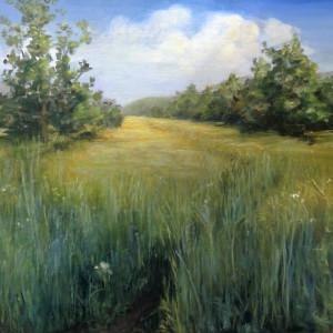 Peaceful prairie walk asnjxa