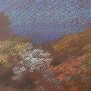 Newberry, Idyllwild Bend, pastel
