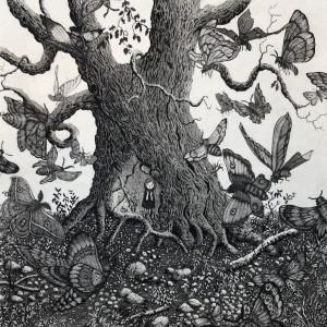 Moth tree nxfqoa