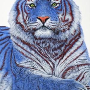 201804 siberian tiger in blue al 200x140cmm zxvptm