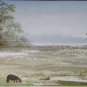 Chincoteague spring salt marsh iv ptvhgt