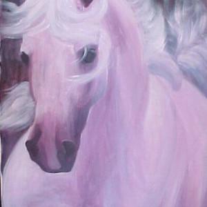 Horisontal abrabian stallion oil ii n0f9lz