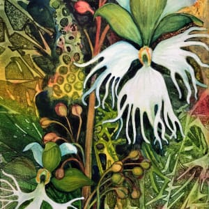 Fringed Prairie Orchids an original watercolor on canvas by Helen R Klebesadel