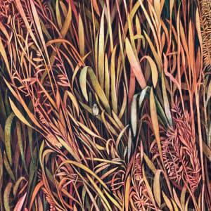 Autumn Grasses I by Helen R Klebesadel