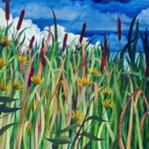 Cattails  by Helen R Klebesadel