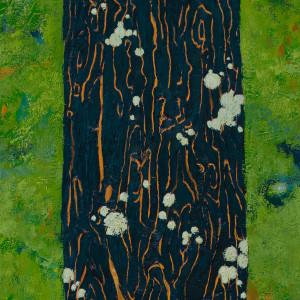 White Lichen by Katherine Steichen Rosing