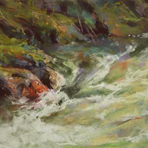 Woodland stream yz7xbp