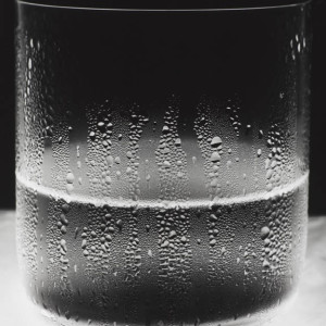 Water Glass 1, 2011 by Amanda Means