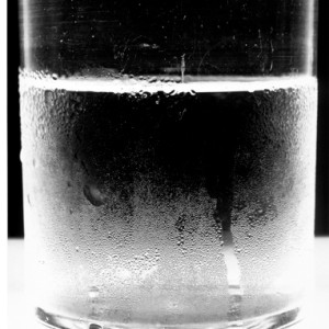 Water Glass 1, 2004 by Amanda Means