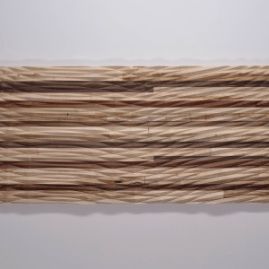Interference Pattern 008 by Michael Mittelman