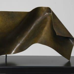 Folded Form 5 by Joe Gitterman