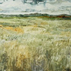 Prairie ii kp8gp5