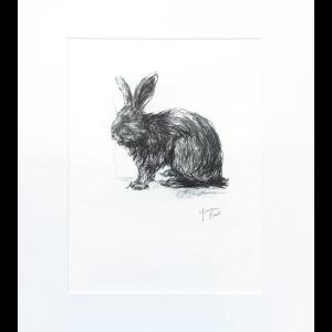 Rabbit 3 by Yvonne East