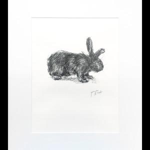 Rabbit 4 by Yvonne East