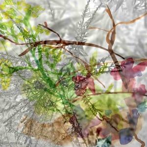 Summer Intensity by Victoria Johns Art