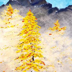 Aspen Grove by M Shane