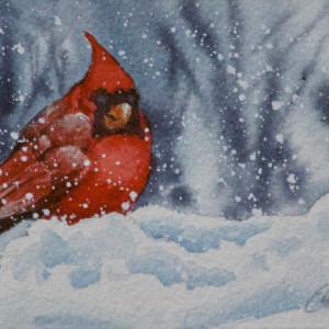 All Fluffed Up and Cozy by Linda Eades Blackburn