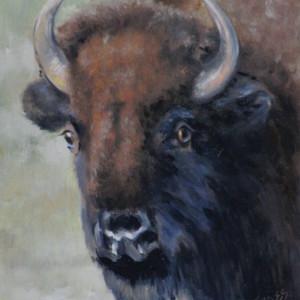 Buffalo Girl by Linda Eades Blackburn