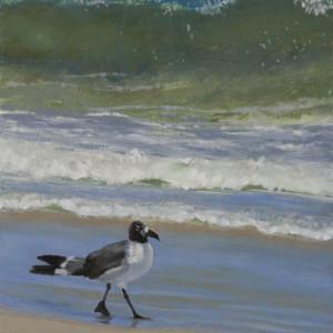 Gull Walk by Linda Eades Blackburn