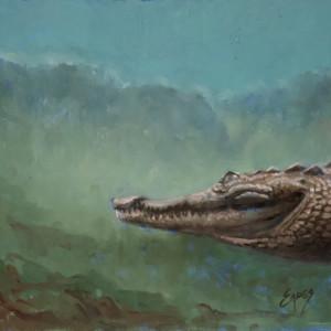 Just a Croc by Linda Eades Blackburn
