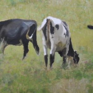 Cow pasture final j1vens
