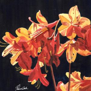 18 71 orange lilies xru4if