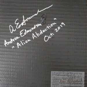 Alien Abduction by Andrea L Edmundson