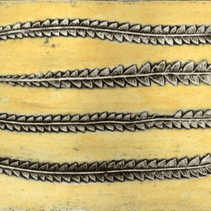 Banksia (Dryandra) 2, 6/6
