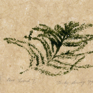 Pine Frond 1, 2-6, by Jacky Lowry