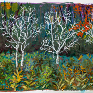 3 Birch trees Andes Rail Trail by Alan Powell