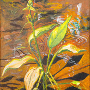 Plein Aire - Lone Plant Life by Alan Powell